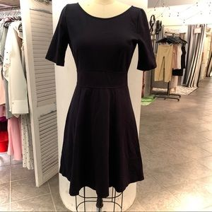 J Crew Fit and Flare Dress